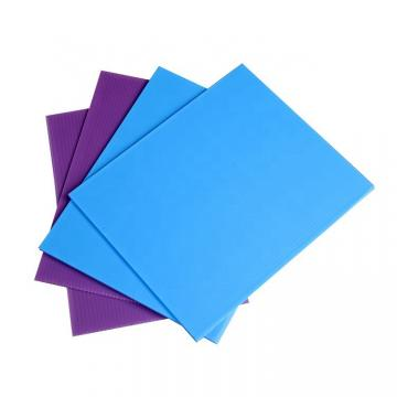 Environmentally Friendly PP Plastic Hollow Sheet/Board for SGS RoHS