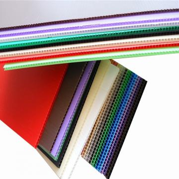 4mm 750GSM Polypropylene Sheet PP Hollow Sheet Factory
