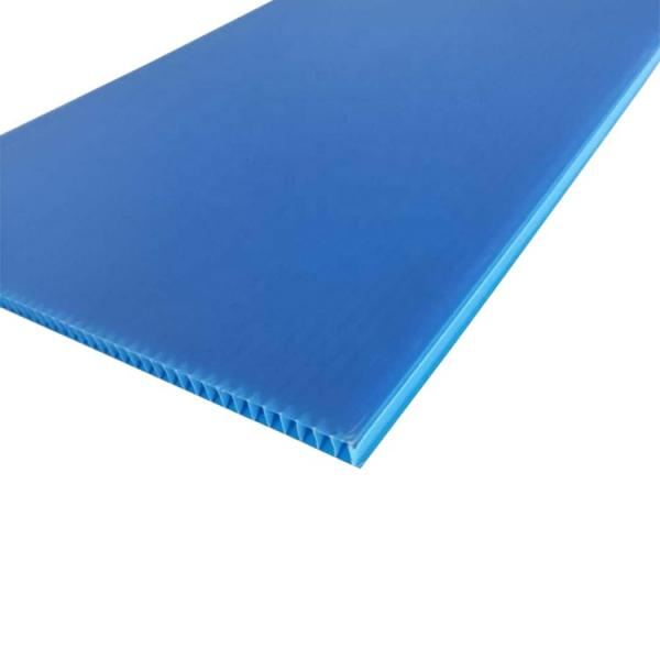 Polypropylene Plastic Seperation/Construction and Building Plastic Protection Board in Box/PP Hollow Coroplast Sheet #3 image