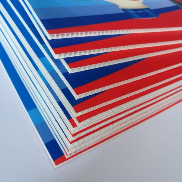 Good Quality Flush PVC Door Panel Price (SC-P075) #3 image