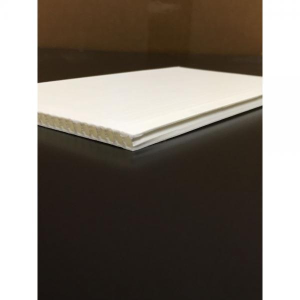 China manufacture PE clear colored profile clear plastic board #1 image
