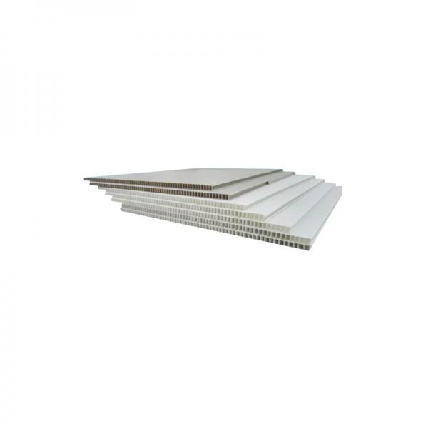 PP Material and 2mm, 3mm, 4mm, 5mm, 6mm, 8mm, 9mm, 10mm, 11mm, 12mm Thickness Fluted Plastic Sheet #2 image