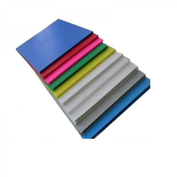 Environmentally Friendly PP Plastic Hollow Sheet/Board for SGS RoHS #2 image